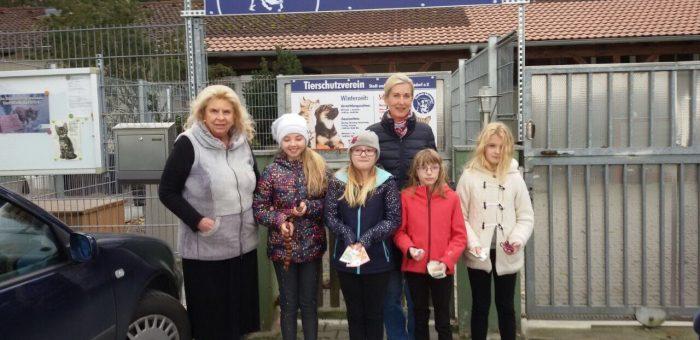 Spende an das Tierheim Schwandorf
