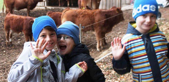 Die Klassen 1 und 2 auf dem Bauernhof