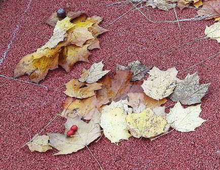 Ethikkinder freuen sich über den bunten Herbst